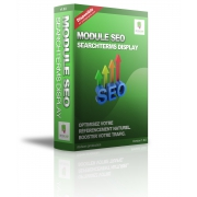 Module SEO SearchTerms Display